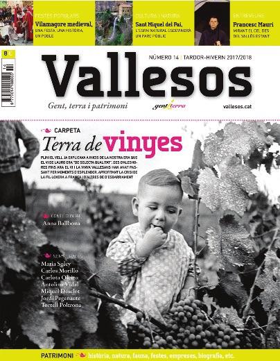 Vallesos 14 - Terra de vinyes